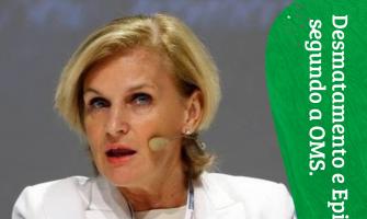 Desmatamentos e pandemias, segundo a OMS.