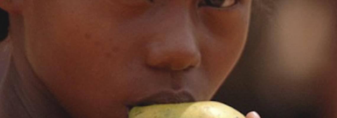Governos devem promover a oferta de alimentos saudáveis nos equipamentos públicos
