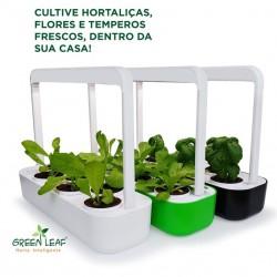 HORTA GREEN LEAF - Verde