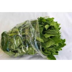 Espinafre africano orgânico - Maço
