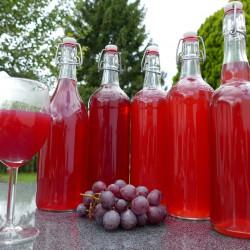 Suco orgânico de uva Isabel 1L